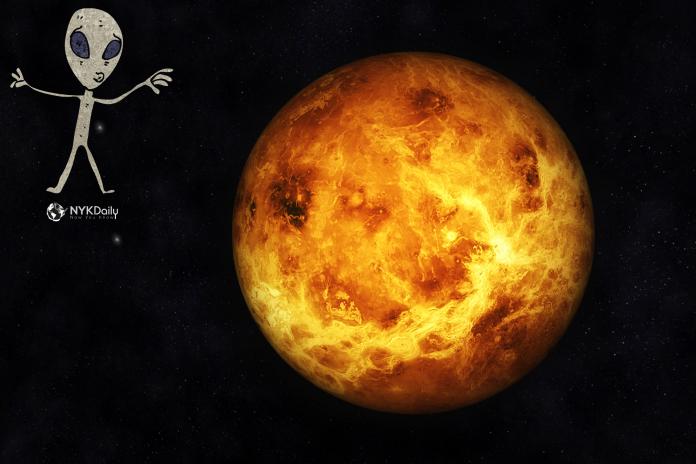 nyk-nykdaily-venus- 외계인-우주-외계인 생명의 잠재적 징후 탐지 금지 불가 성 금성