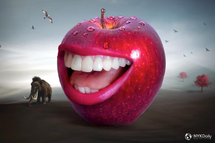 teeth-history-evolution