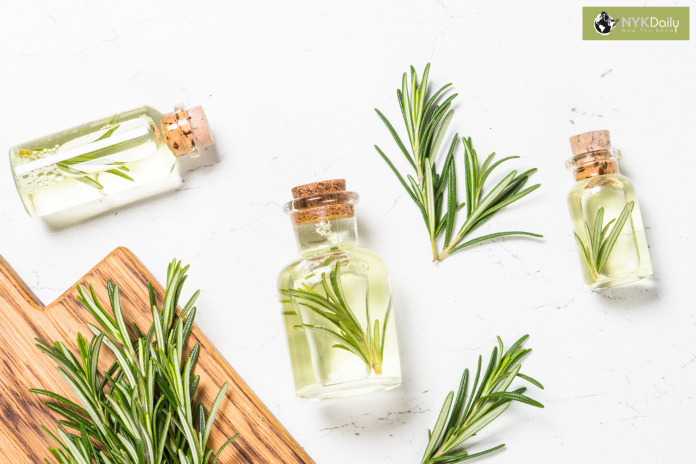 essential-oil-rosemary-aromatherapy