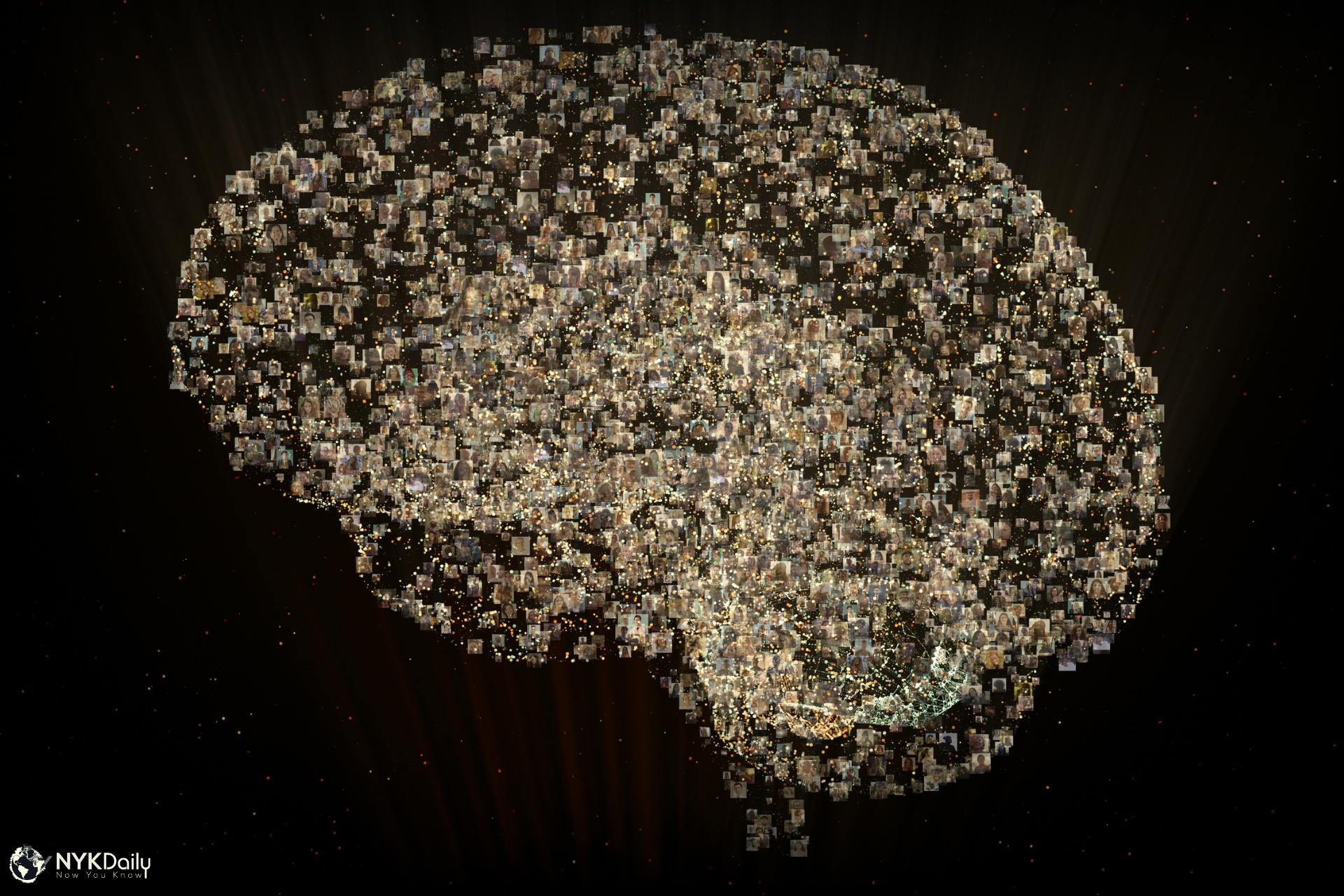 The Neuroscience Behind Déjà vu - NYK Daily