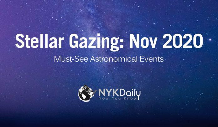 Steller Gazing: NYK Daily