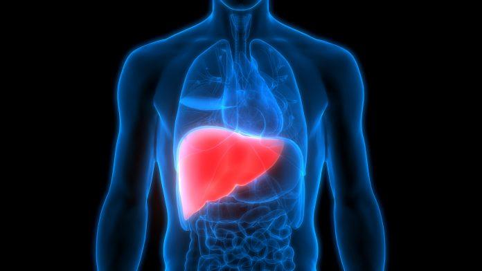 liver-fatty