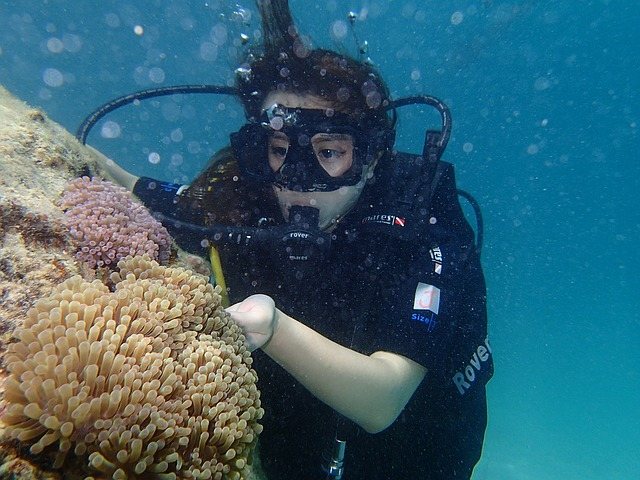 Sabah-Scuba-Diving