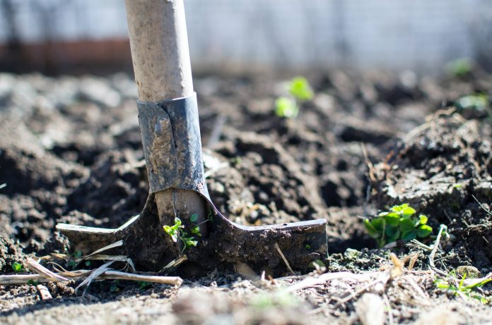 brown shovel